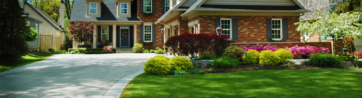 Landscaping in Georgetown - Main Image Contact